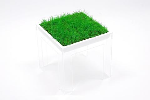 grass 〜しばいす〜 TDW